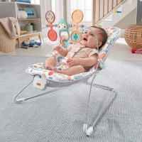 Fisher-Price Sweet Summer Blossoms Baby Bouncer Canada [Sale]