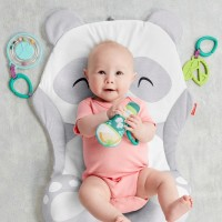 Fisher-Price All-in-one Panda Playmat Canada [Sale]