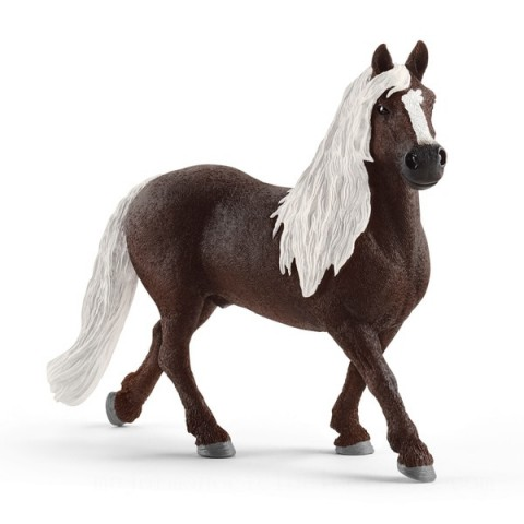 Schleich Black Forest Stallion Toys Canada 2021 [Sale]