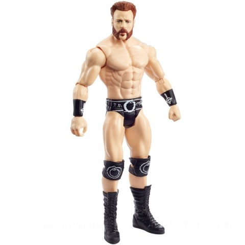 WWE Basic Series 116 Sheamus Action  Figures  Toys Canada